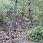 operai forestali al lavoro