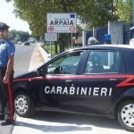 cc arpaia